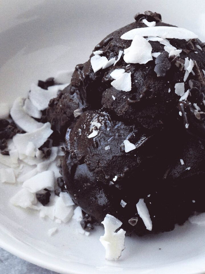 bowl of chocolate ice cream with coconut